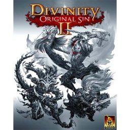 خرید بازی Divinity Original Sin 2