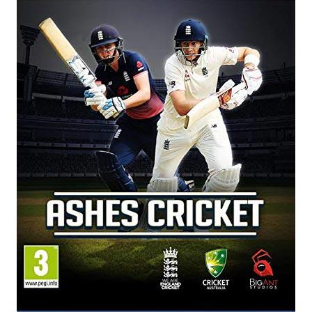 خرید بازی Ashes Cricket